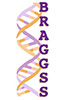 Image: BRAGGS logo
